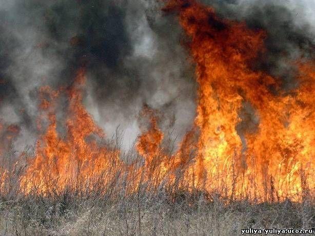 Реферат На Тему Пожары